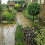 The previous garden in early summer using a standard Ligustrum as a feature plant.