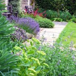 Bold groups of perennials and shrubs gradually lead the eye along a south facing terrace.