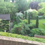 Clipped box hedging and fastigiate yew form a strong visual division between house and garden.