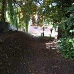 The garden conditions are difficult - sloping, narrow  and shady.
