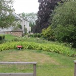 The removal of a  large tree left this area of the garden lacking purpose and interest.