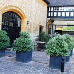 A small seating area created using Osmanthus burkwoodii in faux lead planters with the quick growing Ceanothus 'Skylark' to screen utility area. A simple automatic watering system has been included.